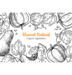 pumpkin frame hand drawn vintage harvest vector image