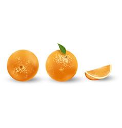 realistic set oranges isolated on white fresh vector image