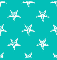 sea star pattern vector image