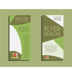 Organic Brochure Flyer design Layout template vector image