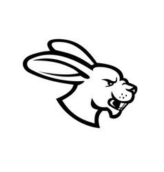 angry jackrabbit hare rabbit head side view vector image