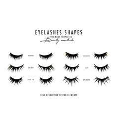 Eyelash extension beauty faux long eye lash vector