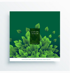 Green nature card cover design with leaves vector