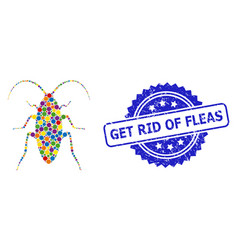 Grunge get rid fleas stamp and colored collage vector