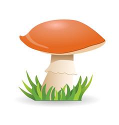 Mushroom boletus vegetable healthy food vector