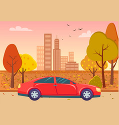 Red sedan car in city park with yellow autumn tree vector