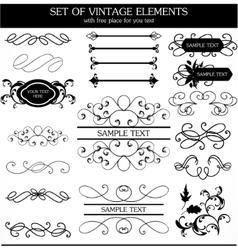 calligraphic vintage set vector image