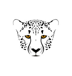cheetah head vector image