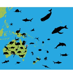 Animals on the map of Australia and Oceania vector image vector image