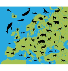 Animals on the map of Europe vector image vector image