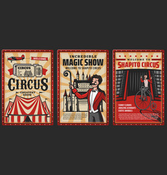 circus or carnival top tent with magician acrobat vector image