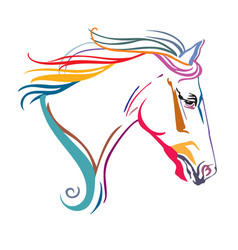 colorful decorative horse 14 vector image