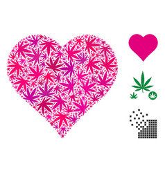 heart collage of hemp leaves vector image