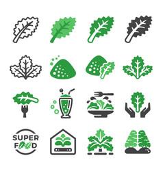 kale icon set vector image