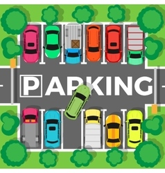 Parking Top View vector image