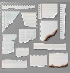Pieces of torn white lined notebook paper square vector