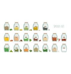 spices in jars big set collection flat vector image