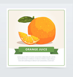 Sweet fresh orange with small slice and green leaf vector