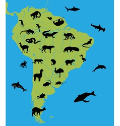 Animals on the map of South America vector image