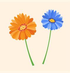 flower summer natural plant vector image
