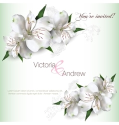 Invitation card Lilly vector image vector image