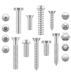 Realistic Screw Icon Set Different Shapes vector image vector image