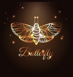 Gold luxury abstract butterfly on brown background vector