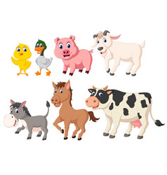collection of the livestock animals vector image