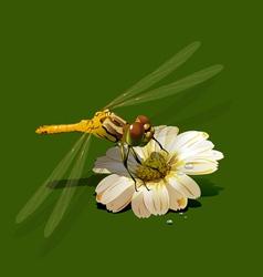 Dragonfly on white flower vector