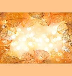 festive background autumn leaves vector image