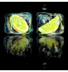 Frozen lemon slice vector image
