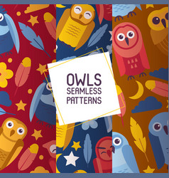 group colorful bright birds cartoon owls night vector image