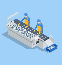 Isometric fish industry seafood production vector