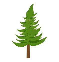 Spruce icon cartoon style vector