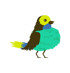 tropical bird turquoise breasted vector image vector image