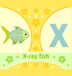 the english alphabet with x-ray fish vector image