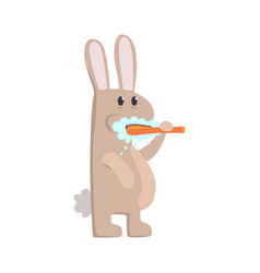 cute cartoon bunny brushing teeth with tooth brush vector image vector image