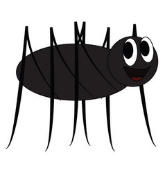 A black cartoon spider with two bulging eyes or vector