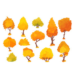 autumn trees shrubs bushes with crown of vector image