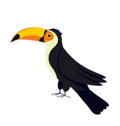Black toucan bird with large yellow beak on white vector
