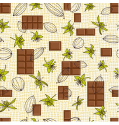 cocoa pods and flowers with chocolate tablet vector image
