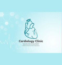 human heart for cardiology vector image