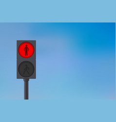 Pedestrian traffic light red light on sky vector