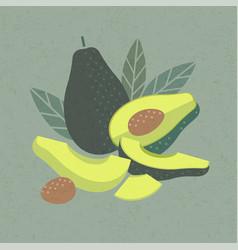Ripe avocado poster packaging vector