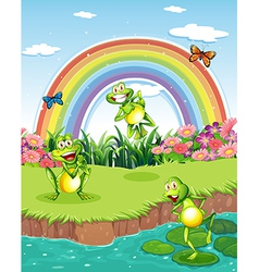 Three playful frogs at the pond and a rainbow in vector