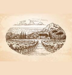 Vineyard sea vector