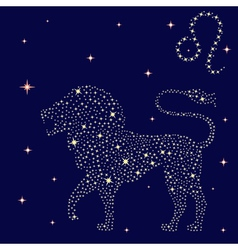 Zodiac sign Leo on the starry sky vector image