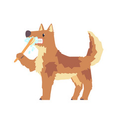cute cartoon dog brushing teeth with tooth brush vector image vector image