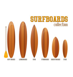 surfboards collection vector image