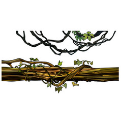 Cartoon creeper twigs and a log entwined with ivy vector